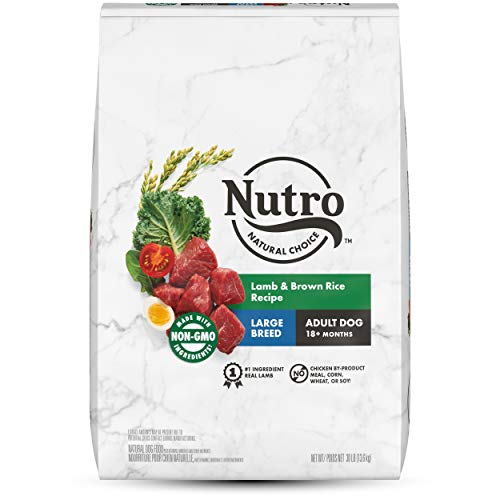 5. NUTRO Wholesome Essentials Adult Dry Dog Food