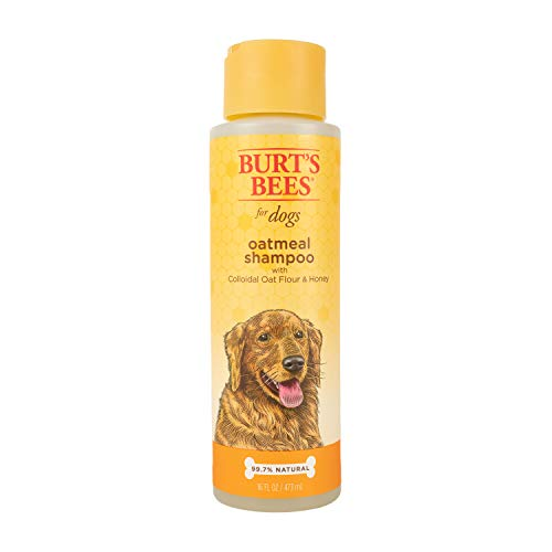 Burt's Bees Natural Shampoo for Dogs, Made with Colloidal Oat Flour and Honey, 16 Oz