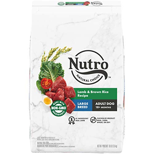 5. Nutro WHOLESOME ESSENTIALS