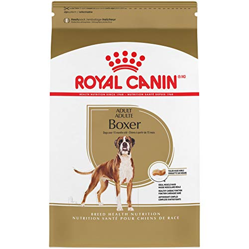 1. Royal Canin Breed Health Nutrition Boxer Adult Dry Dog Food