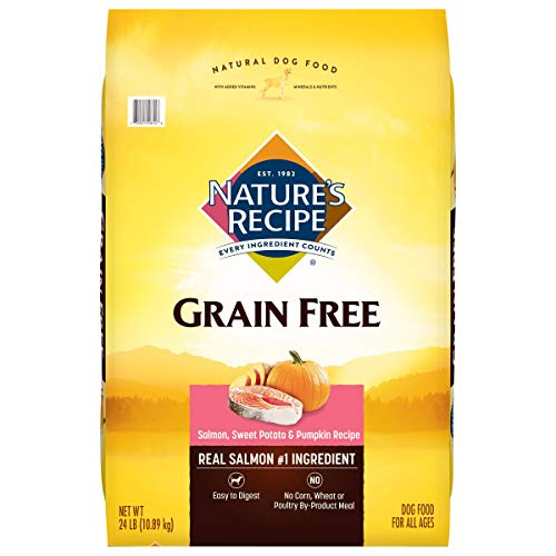 1. Nature's Recipe Grain-Free Easy to Digest