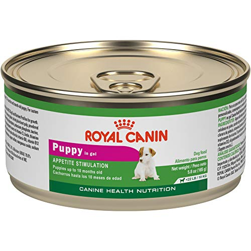 Royal Canin Canine Health Nutrition Puppy In Gel Canned Dog Food, 5.8 ounce Can (Pack of 24)