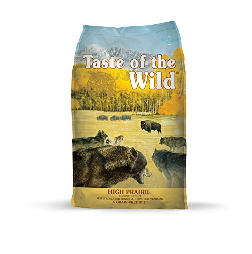 1. Taste of the Wild Grain-Free High Protein Dry Dog Food
