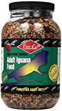 Rep-Cal SRP00805 Adult Iguana Food, 2.5-Pound