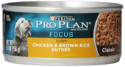 Purina Pro Plan Wet Dog Food, Focus, Puppy Chicken & Brown Rice Entree Classic, 5.5-Ounce Can by Purina Pro Plan