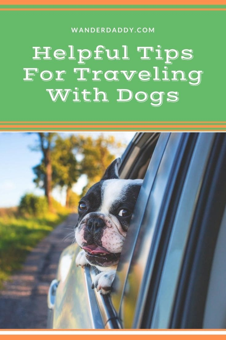 Helpful Tips For Traveling With Dogs