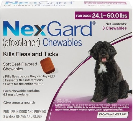 best flea medicines for dogs